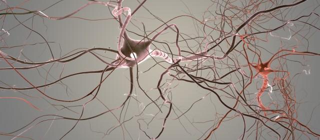 Obrazowanie mózgu